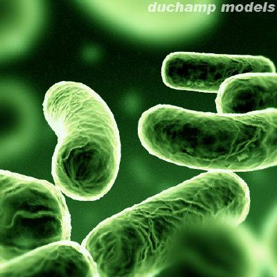 http://nasyidmadany.files.wordpress.com/2010/04/bakteri1.jpg